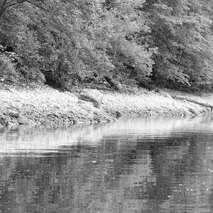 Image 210 - WATER, ROCKS, TREES & SKIES 2016, JP Sergent