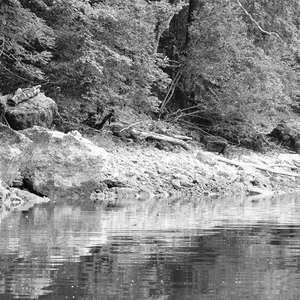 Image 199 - WATER, ROCKS, TREES & SKIES 2016, JP Sergent