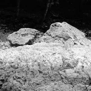 Image 182 - WATER, ROCKS, TREES & SKIES 2016, JP Sergent