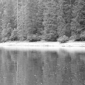 Image 192 - WATER, ROCKS, TREES & SKIES 2016, JP Sergent