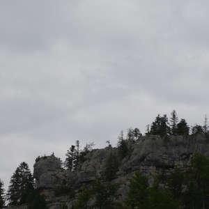 Image 426 - WATER, ROCKS, TREES & SKIES 2016, JP Sergent