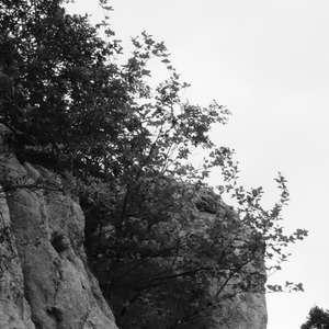 Image 260 - WATER, ROCKS, TREES & SKIES 2016, JP Sergent