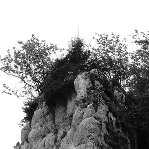 Image 261 - WATER, ROCKS, TREES & SKIES 2016, JP Sergent