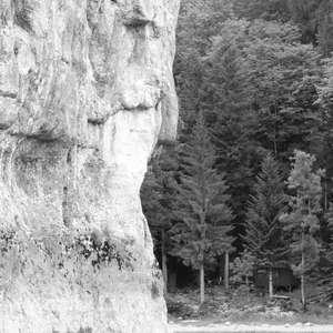 Image 258 - WATER, ROCKS, TREES & SKIES 2016, JP Sergent