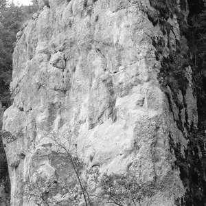 Image 257 - WATER, ROCKS, TREES & SKIES 2016, JP Sergent
