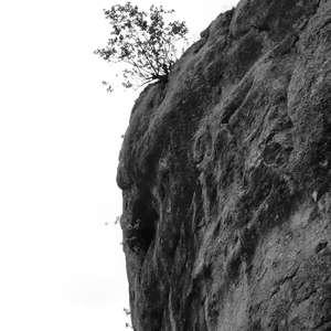 Image 248 - WATER, ROCKS, TREES & SKIES 2016, JP Sergent