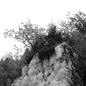 Image 253 - WATER, ROCKS, TREES & SKIES 2016, JP Sergent