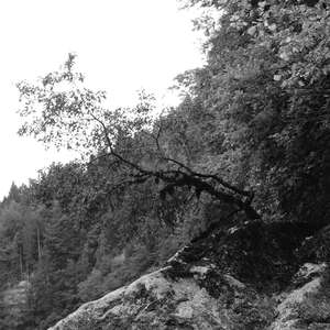 Image 233 - WATER, ROCKS, TREES & SKIES 2016, JP Sergent