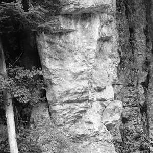Image 236 - WATER, ROCKS, TREES & SKIES 2016, JP Sergent