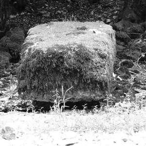 Image 226 - WATER, ROCKS, TREES & SKIES 2016, JP Sergent