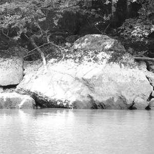 Image 1 - WATER, ROCKS, TREES & SKIES 2016, JP Sergent