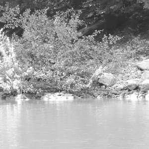 Image 2 - WATER, ROCKS, TREES & SKIES 2016, JP Sergent