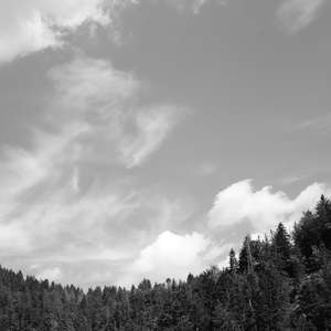 Image 18 - WATER, ROCKS, TREES & SKIES 2016, JP Sergent