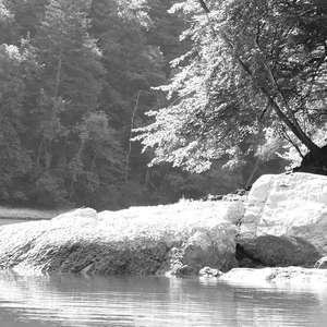 Image 15 - WATER, ROCKS, TREES & SKIES 2016, JP Sergent
