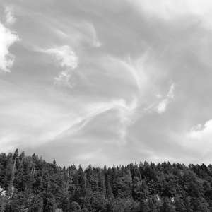 Image 6 - WATER, ROCKS, TREES & SKIES 2016, JP Sergent