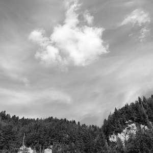 Image 7 - WATER, ROCKS, TREES & SKIES 2016, JP Sergent