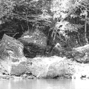 Image 4 - WATER, ROCKS, TREES & SKIES 2016, JP Sergent