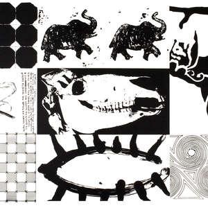Image 64 - Half Paper 1997/2003,  monoprint, acrylic silkscreened on BFK Rives paper, 61 x 107 cm., JP Sergent