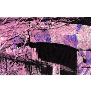 Image 83 - Half Paper 1997/2003,  monoprint, acrylic silkscreened on BFK Rives paper, 61 x 107 cm., JP Sergent