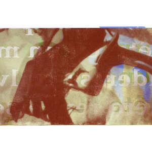 Image 86 - Half Paper 1997/2003,  monoprint, acrylic silkscreened on BFK Rives paper, 61 x 107 cm., JP Sergent