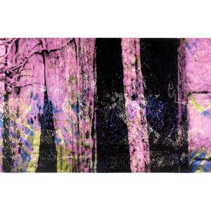 Image 74 - Half Paper 1997/2003,  monoprint, acrylic silkscreened on BFK Rives paper, 61 x 107 cm., JP Sergent