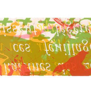 Image 95 - Half Paper 1997/2003,  monoprint, acrylic silkscreened on BFK Rives paper, 61 x 107 cm., JP Sergent