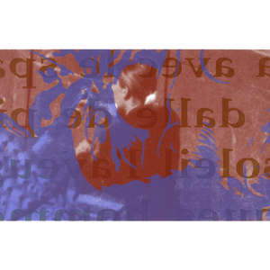 Image 88 - Half Paper 1997/2003,  monoprint, acrylic silkscreened on BFK Rives paper, 61 x 107 cm., JP Sergent