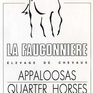Image 181 - Visuels France 1980, JP Sergent