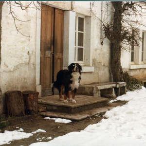 Image 179 - Visuels France 1980, JP Sergent
