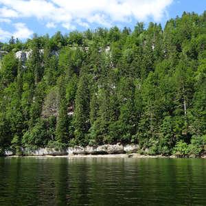 Image 264 - WATER, ROCKS, TREES & SKIES 2016, JP Sergent