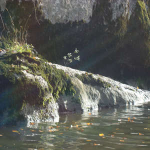 Image 162 - Jean-Pierre sergent, Water, Rocks, Trees & Flowers, April 2014, JP Sergent