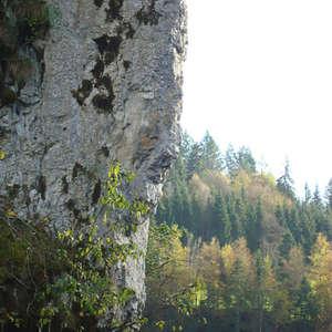 Image 168 - Jean-Pierre sergent, Water, Rocks, Trees & Flowers, April 2014, JP Sergent