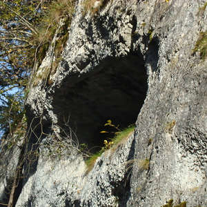 Image 167 - Jean-Pierre sergent, Water, Rocks, Trees & Flowers, April 2014, JP Sergent
