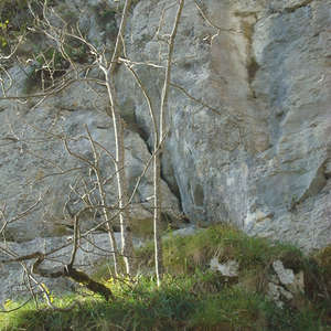 Image 170 - Jean-Pierre sergent, Water, Rocks, Trees & Flowers, April 2014, JP Sergent