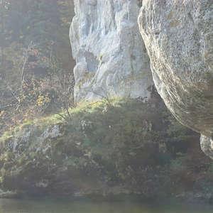 Image 171 - Jean-Pierre sergent, Water, Rocks, Trees & Flowers, April 2014, JP Sergent