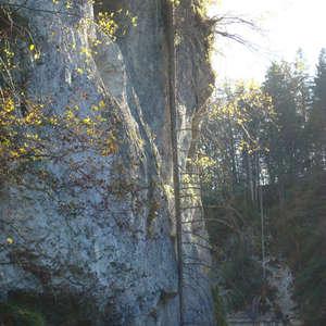 Image 142 - Jean-Pierre sergent, Water, Rocks, Trees & Flowers, April 2014, JP Sergent