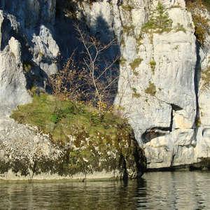 Image 149 - Jean-Pierre sergent, Water, Rocks, Trees & Flowers, April 2014, JP Sergent