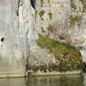 Image 152 - Jean-Pierre sergent, Water, Rocks, Trees & Flowers, April 2014, JP Sergent