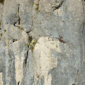 Image 151 - Jean-Pierre sergent, Water, Rocks, Trees & Flowers, April 2014, JP Sergent