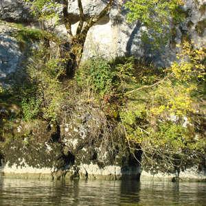 Image 153 - Jean-Pierre sergent, Water, Rocks, Trees & Flowers, April 2014, JP Sergent