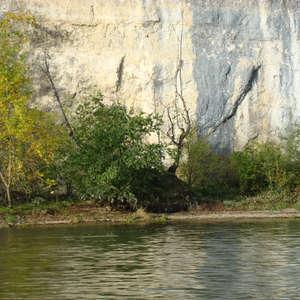 Image 179 - Jean-Pierre sergent, Water, Rocks, Trees & Flowers, April 2014, JP Sergent