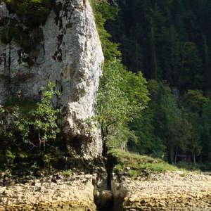 Image 288 - Jean-Pierre sergent, Water, Rocks, Trees & Flowers, April 2014, JP Sergent