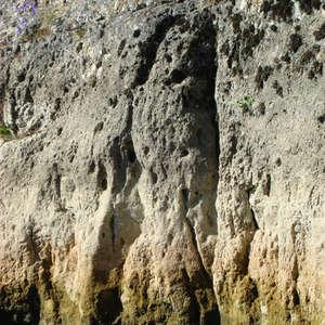 Image 284 - Jean-Pierre sergent, Water, Rocks, Trees & Flowers, April 2014, JP Sergent