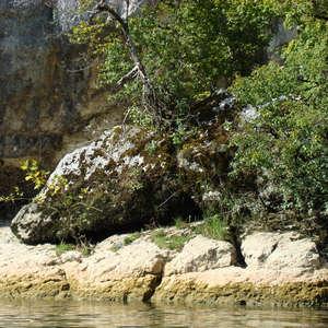 Image 292 - Jean-Pierre sergent, Water, Rocks, Trees & Flowers, April 2014, JP Sergent