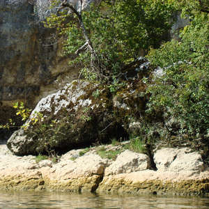 Image 292 - Jean-Pierre sergent, Water, Rocks, Trees & Flowers, April 2014, JP Sergent