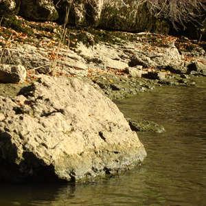 Image 181 - Jean-Pierre sergent, Water, Rocks, Trees & Flowers, April 2014, JP Sergent