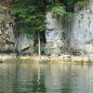 Image 276 - Jean-Pierre sergent, Water, Rocks, Trees & Flowers, April 2014, JP Sergent