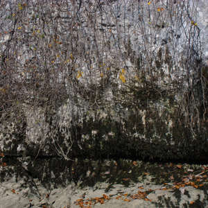 Image 189 - Jean-Pierre sergent, Water, Rocks, Trees & Flowers, April 2014, JP Sergent