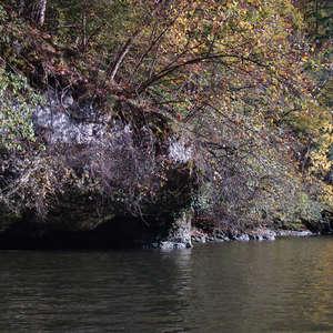 Image 190 - Jean-Pierre sergent, Water, Rocks, Trees & Flowers, April 2014, JP Sergent
