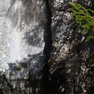 Image 188 - Jean-Pierre sergent, Water, Rocks, Trees & Flowers, April 2014, JP Sergent